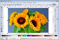 Как использовать редактор изображений
